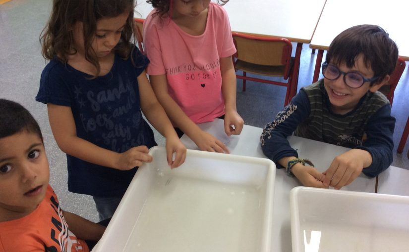 SURFACE TENSION: MAKING PAPER CLIP FLOAT